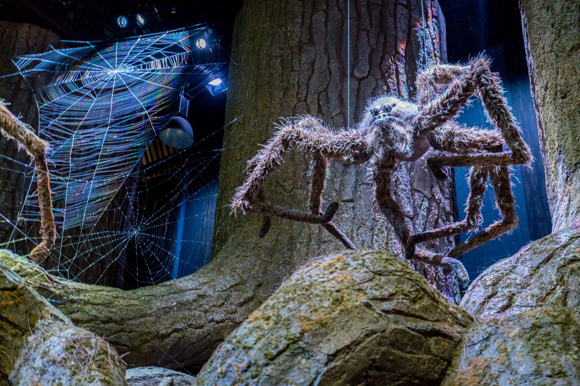 Spiders inside the Forbidden Forest as seen in Harry Potter movies at the Warner Bros. Studio Tour London.