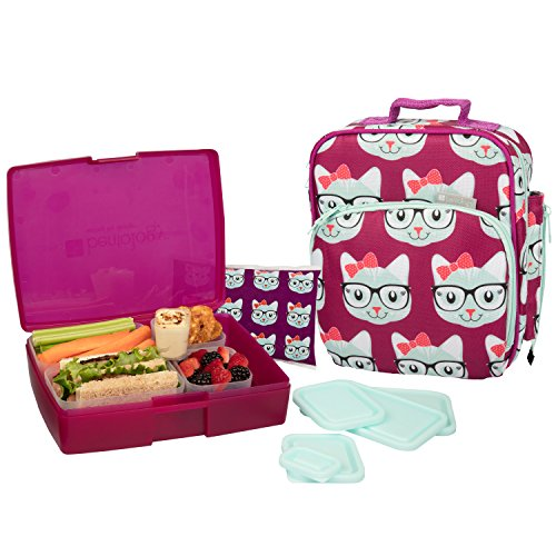 kids bento lunches choosing the right lunch box. Black Bedroom Furniture Sets. Home Design Ideas
