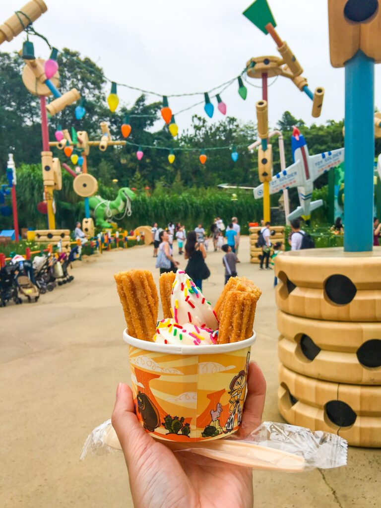 Churro soft serve ice cream from Jessie's Snack Shack at Hong Kong Disneyland.