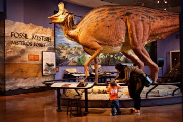 Kids Go Free to over 100 attractions in San Diego this October. Get the details here.