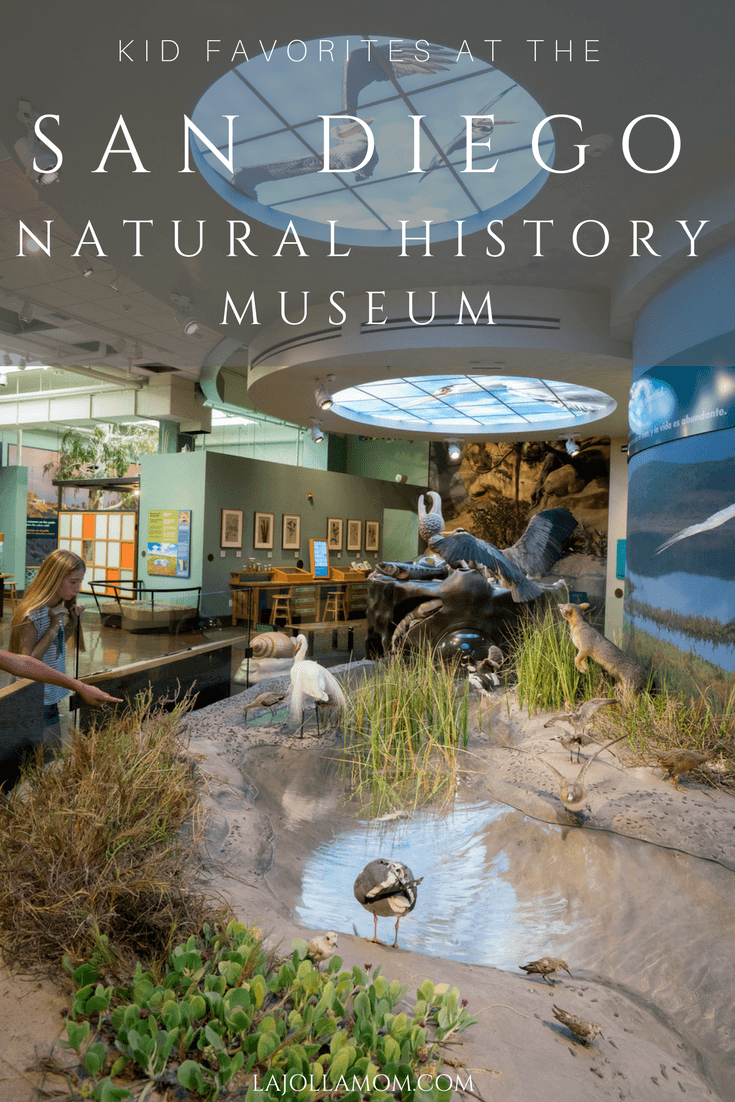 Find out what local kids love to do at the San Diego Natural History Museum in Balboa Park.