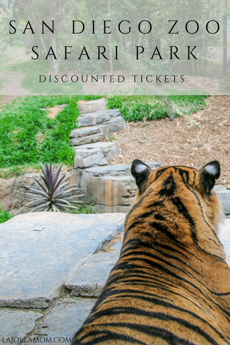 Buy discounted San Diego Zoo Safari Park tickets