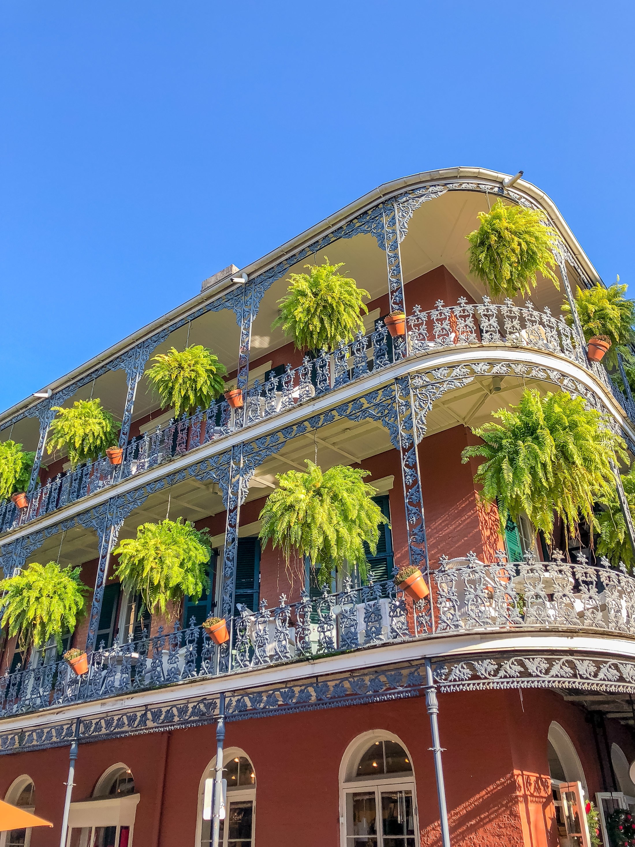 Best Food History Tour In New Orleans