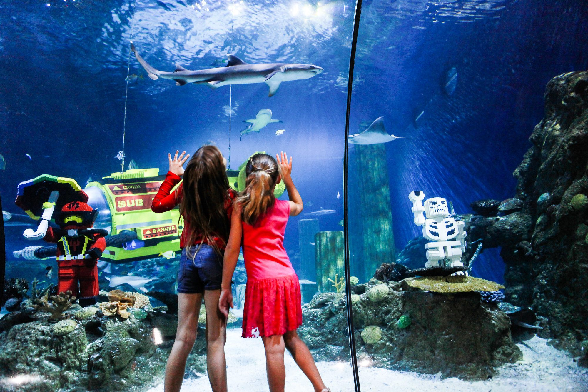 Kids love SEA LIFE Aquarium at LEGOLAND California Resort.