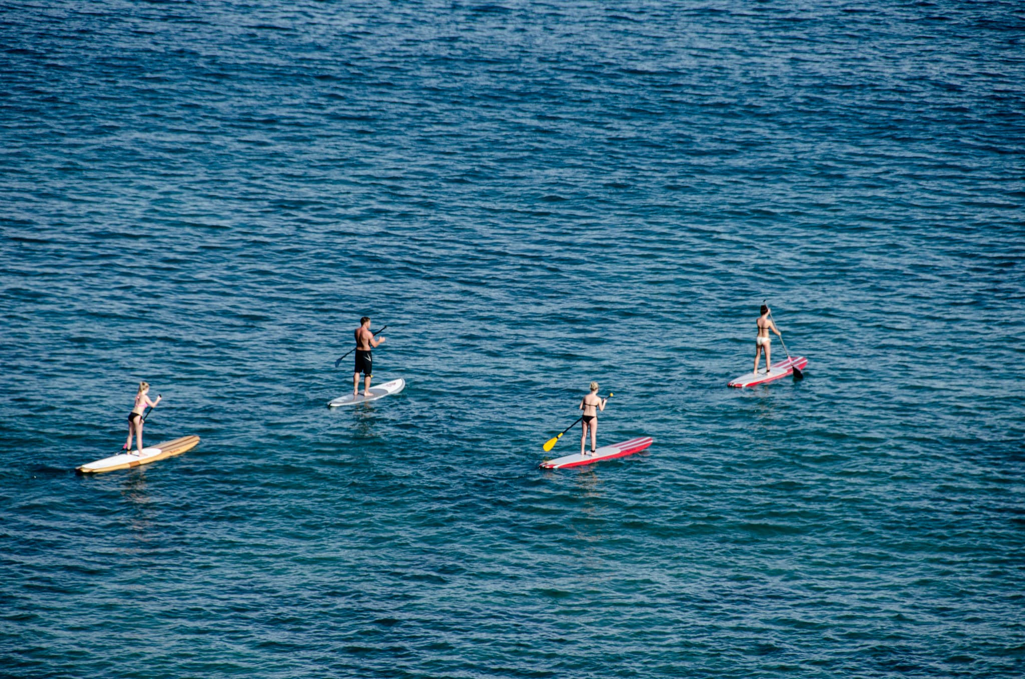 Go stand-up paddle boarding in Kaanapali Maui.