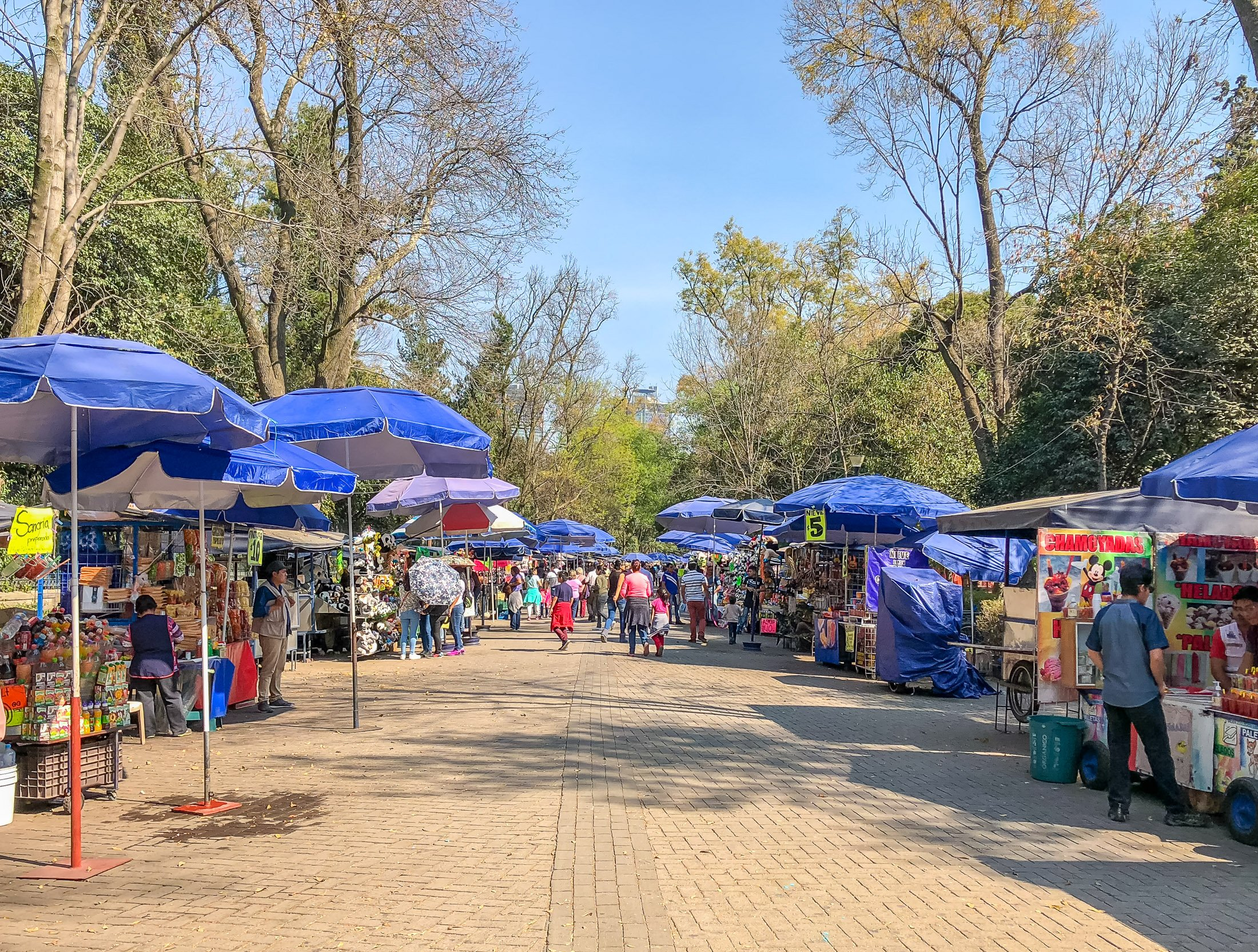 Chapultepec Park is one of the best things to do in Mexico City