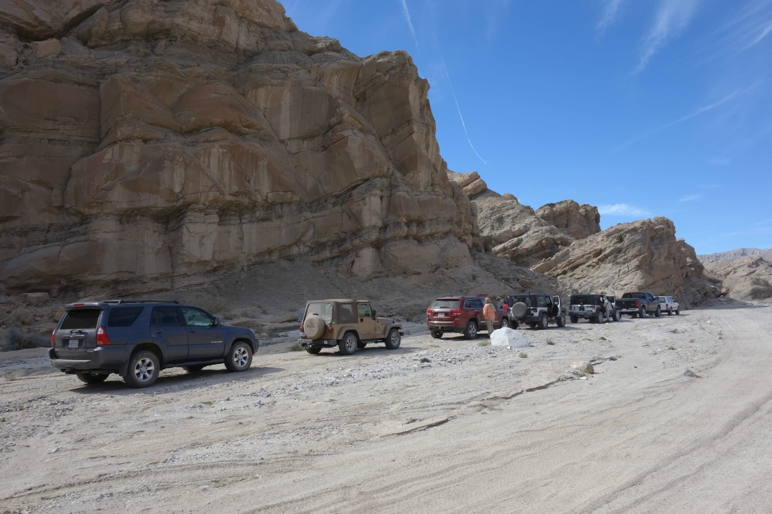 A line up of cars at Fish Creek in Anza-Borrego Desert State Park.