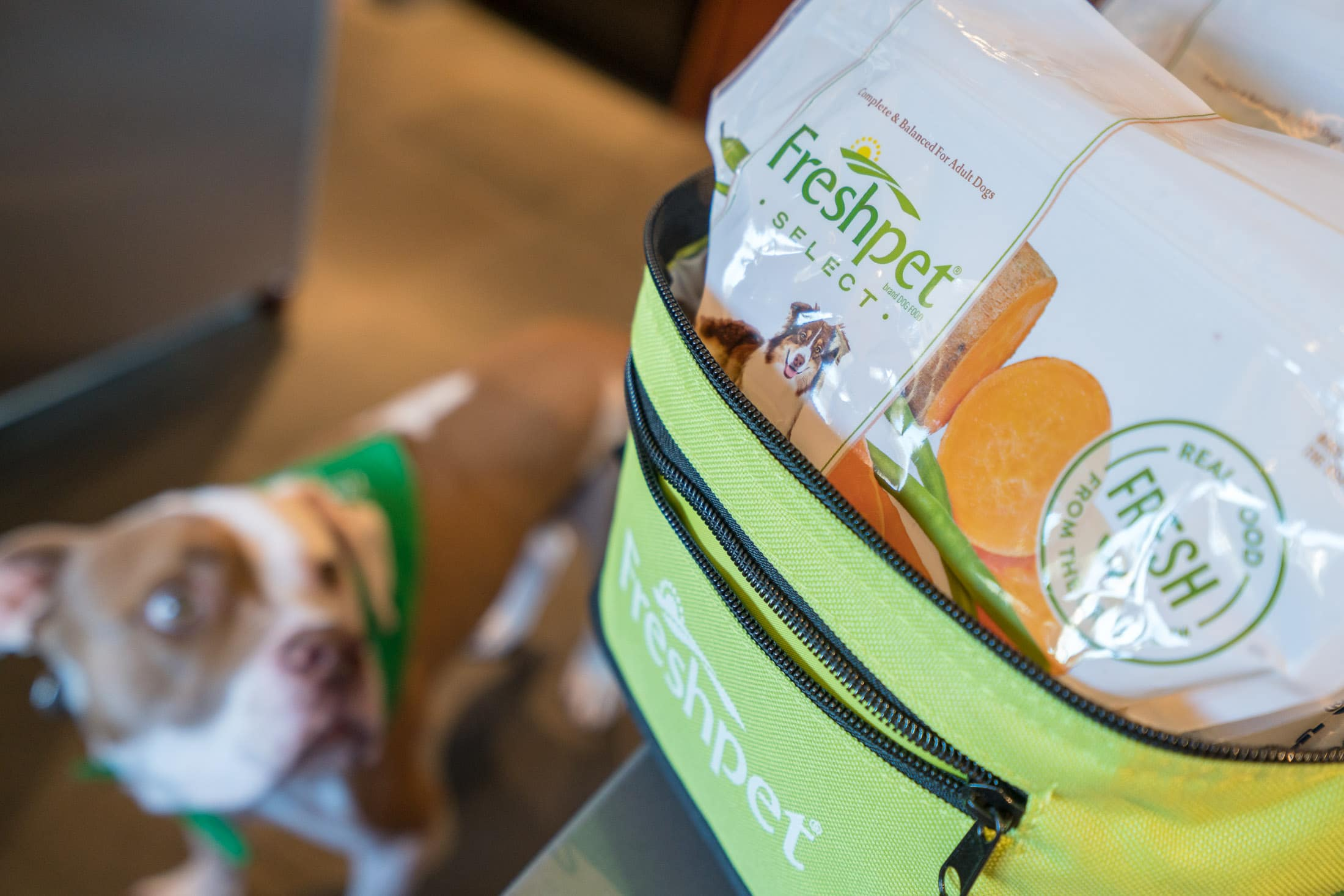 Freshpet fresh dog food review