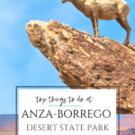 Anza-Borrego Desert State Park is the largest California state park and offers opportunities to hike, camp, stargaze, spot wildflowers, and more year-round.