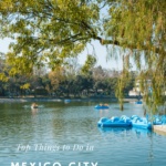A list of the best Mexico City attractions for all ages.