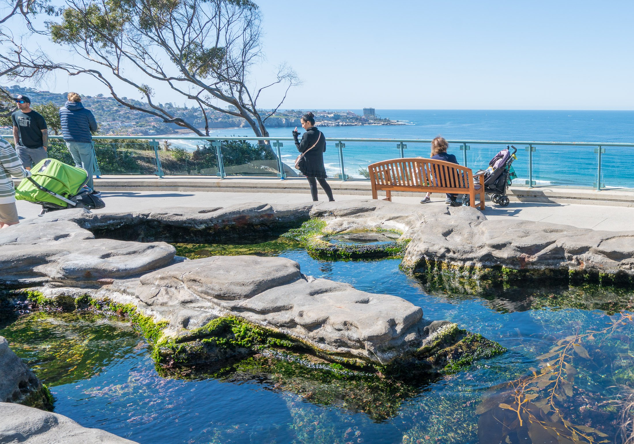 Tide Pool Plaza at Birch Aquarium