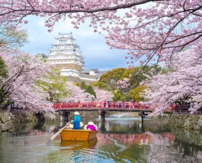 3 Amazing Destinations for Spring Flowers