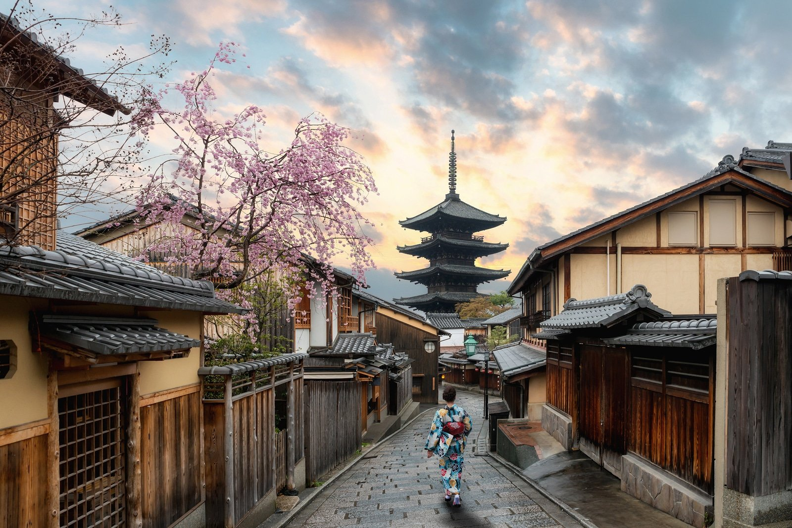 Spring flower destinations: Kyoto sakura season