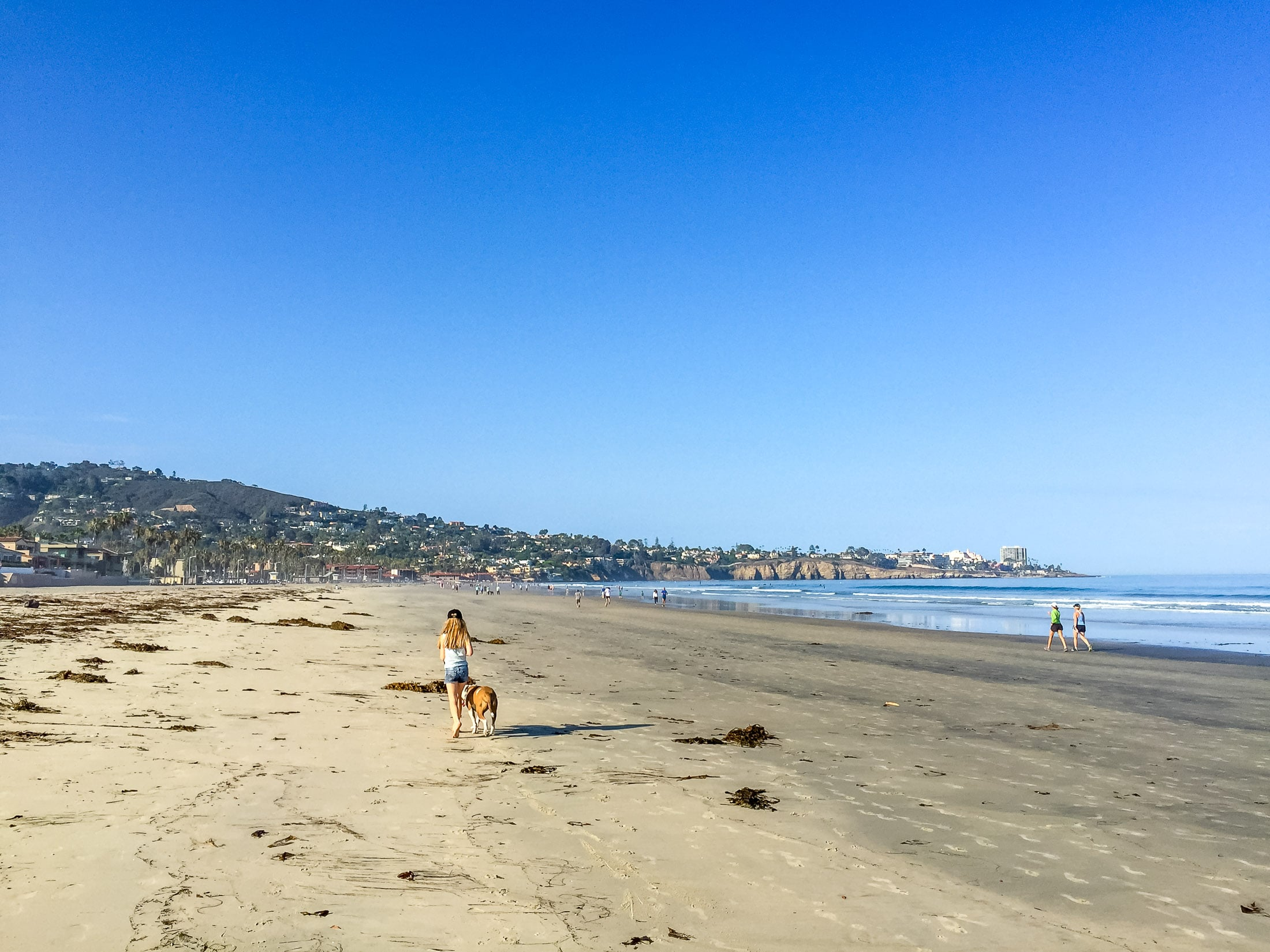 La Jolla Shores Beach is one of the best in San Diego