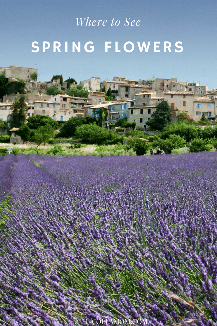 Spring flower destinations: Grasse, France a town in Provence famous for its parfumeries.
