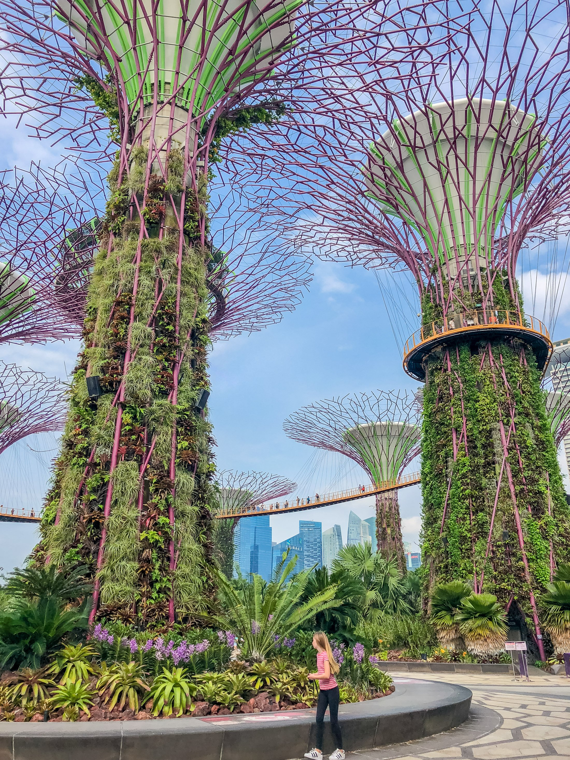 iPhone photo of Singapore's Super Tree Garden