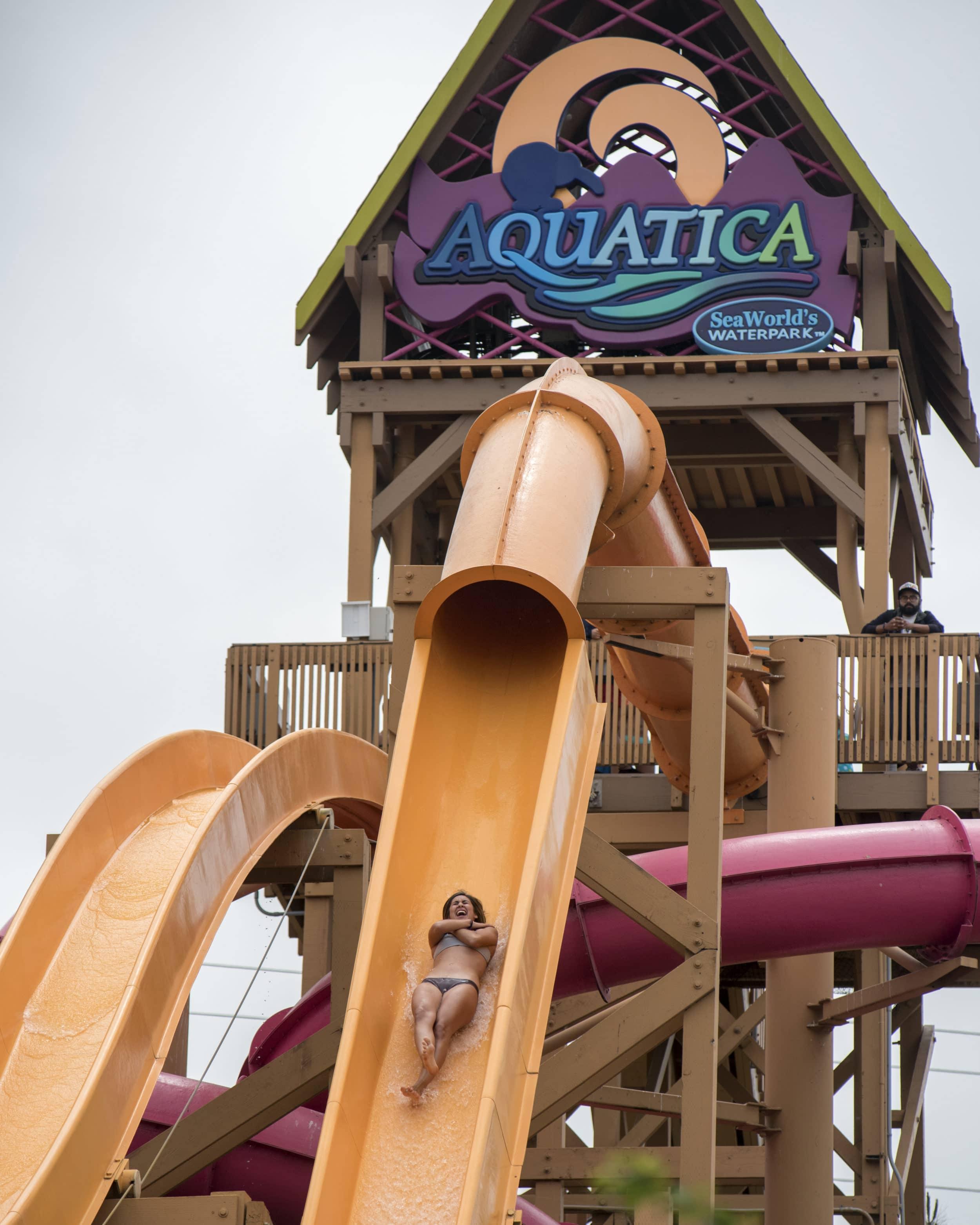 How to buy discount aquatica san diego tickets la jolla mom - Busch gardens discount tickets aaa ...
