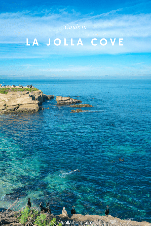 Things to do at La Jolla Cove from snorkeling to best restaurants.