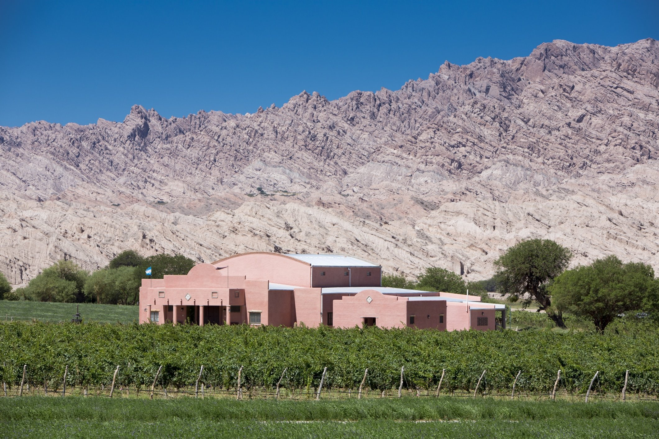 Salta winery in the Calchaquí Valleys