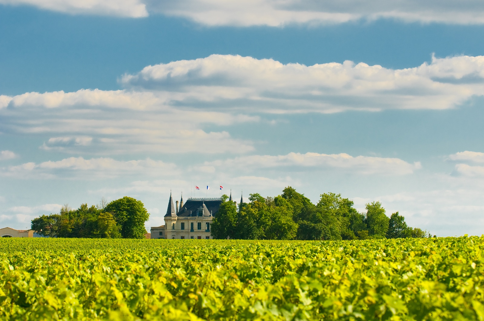 Chateau and vineyard in Margaux Bordeaux France