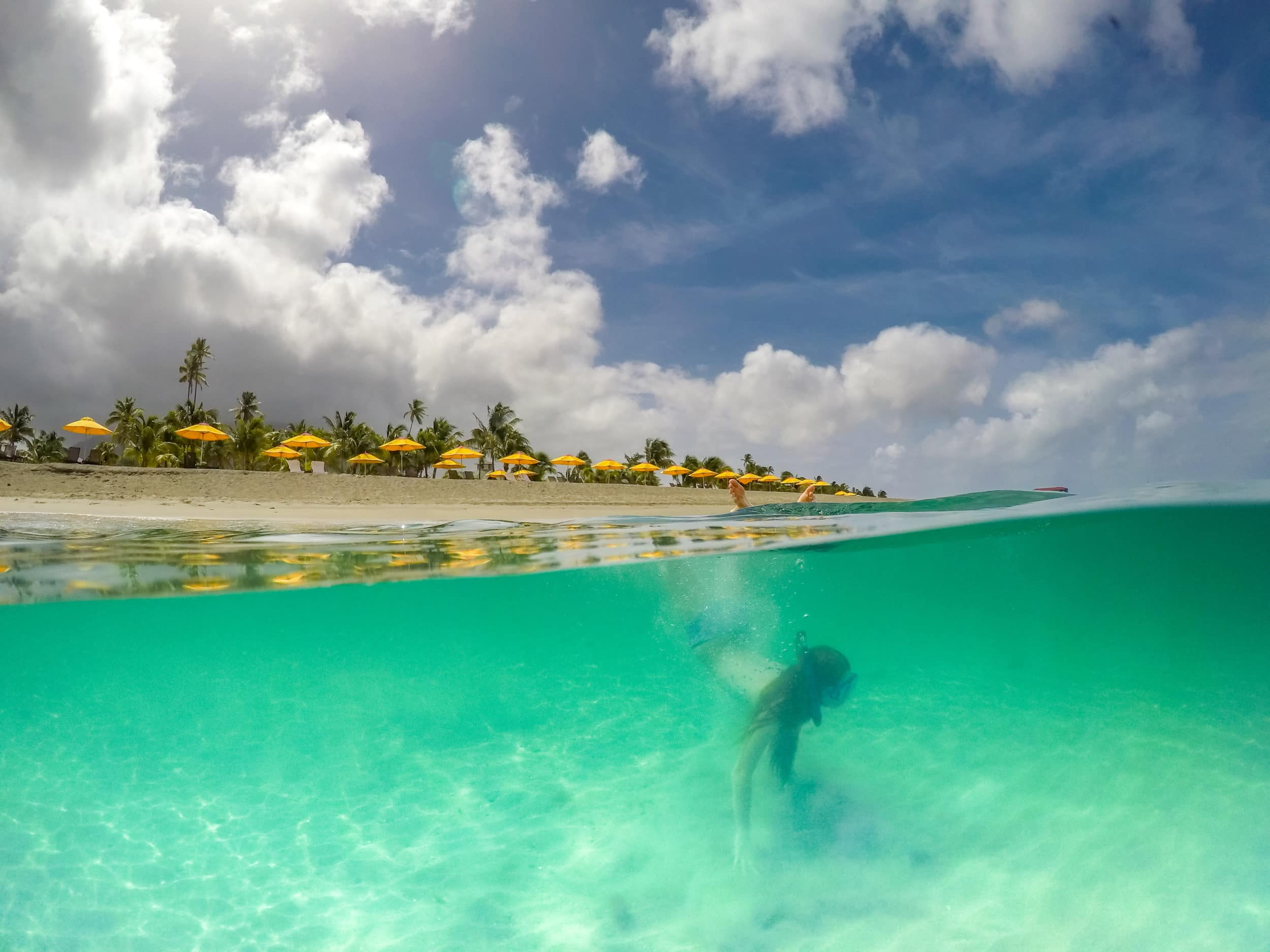Go snorkeling in front of Four Seasons Nevis