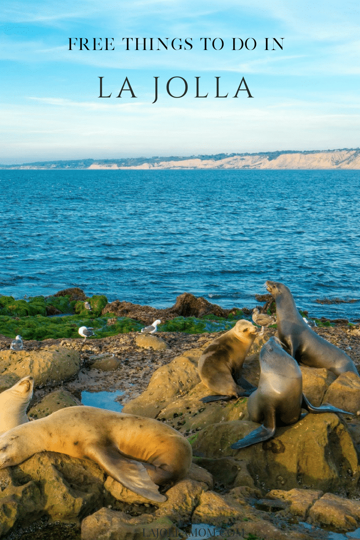 The best things to do in La Jolla, California won't cost a cent.