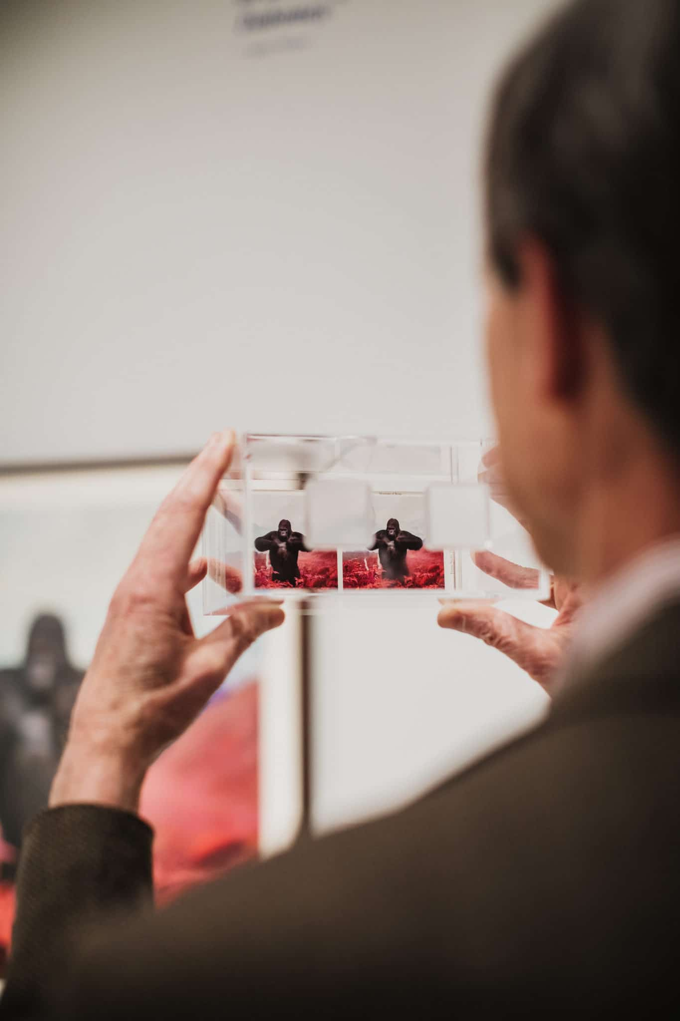 Best San Diego Museums: A man looks at a photo at the Museum of Photographic Arts.