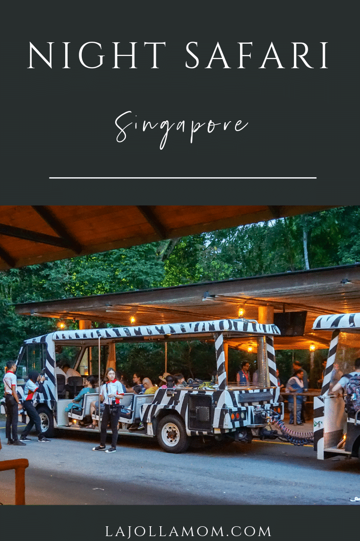 What to know about visiting Night Safari Singapore including popular animals and how to buy tickets.