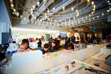 Los Angeles with kids: Natural History Museum