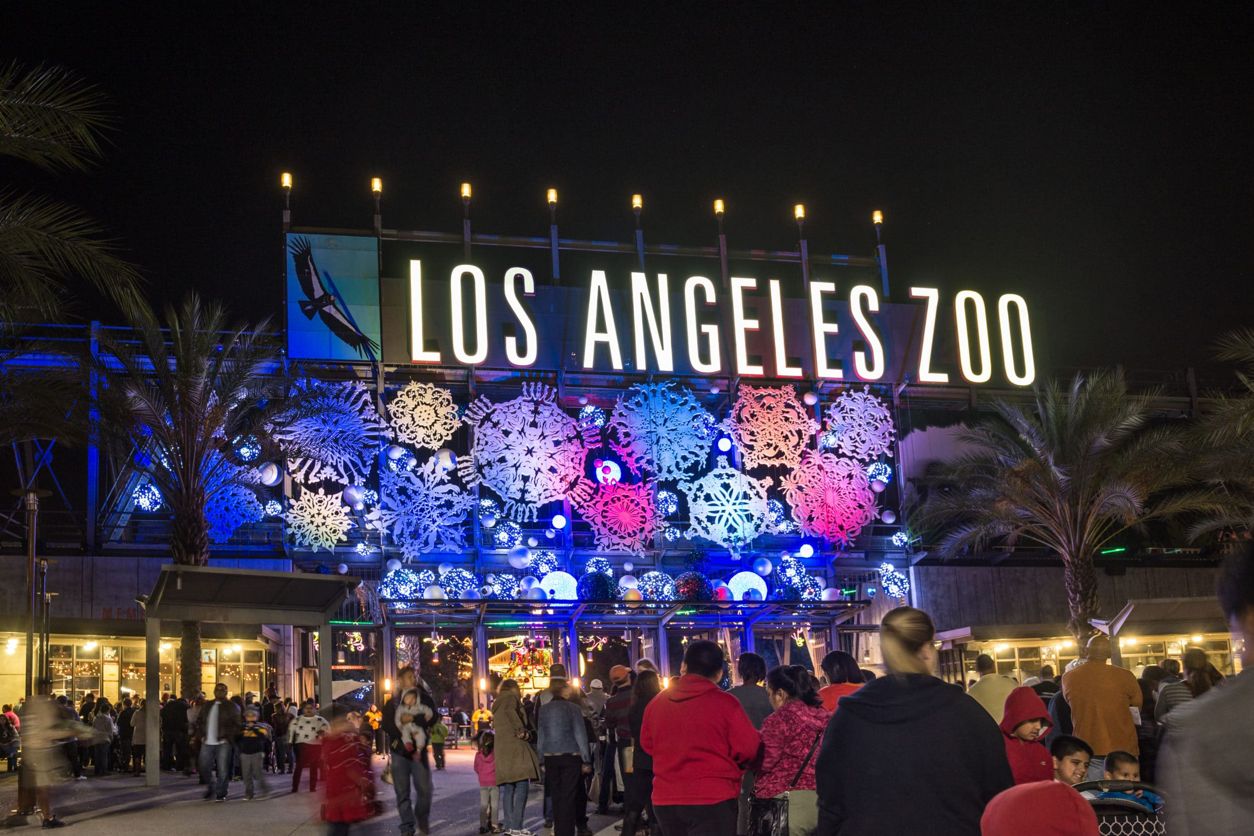 Los Angeles Zoo Holiday Lights