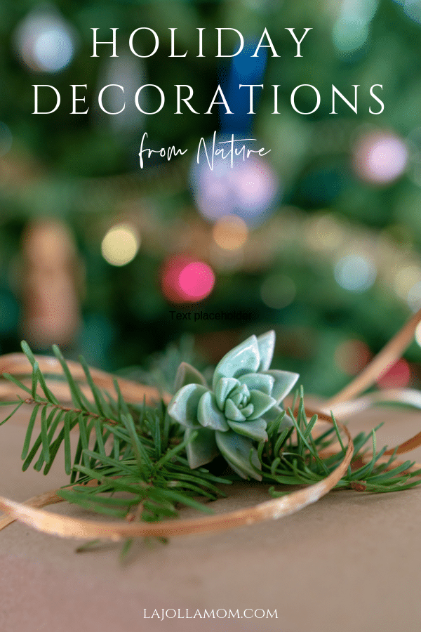 Three ways to use natural Christmas decorations and why a real Christmas Tree is best, written with tips from The Nature Conservancy.