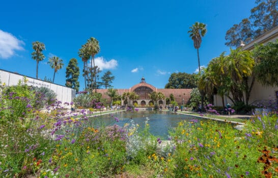 Top 15 Things to Do in Balboa Park