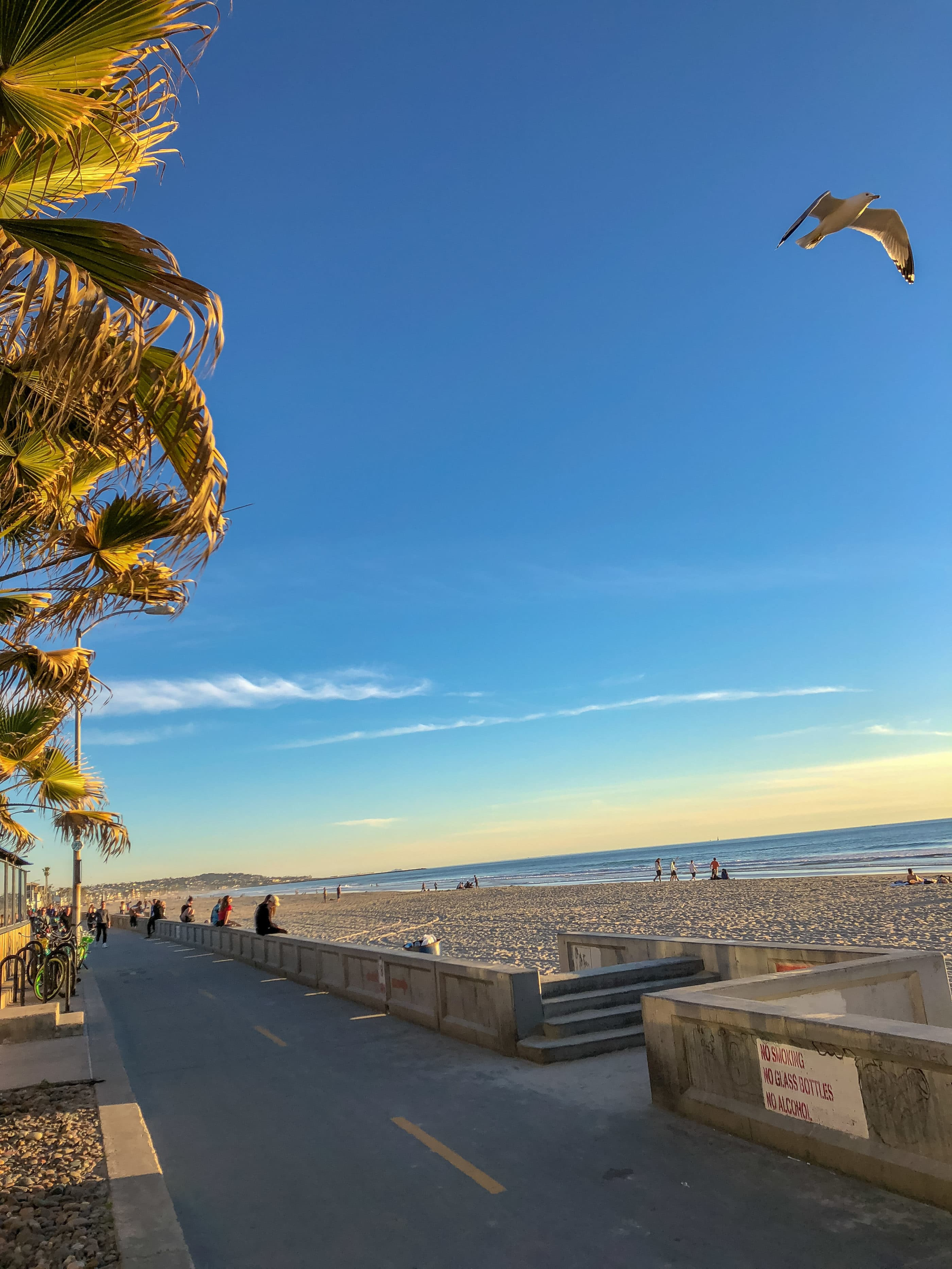 Guide To Pacific Beach Beaches In San Diego