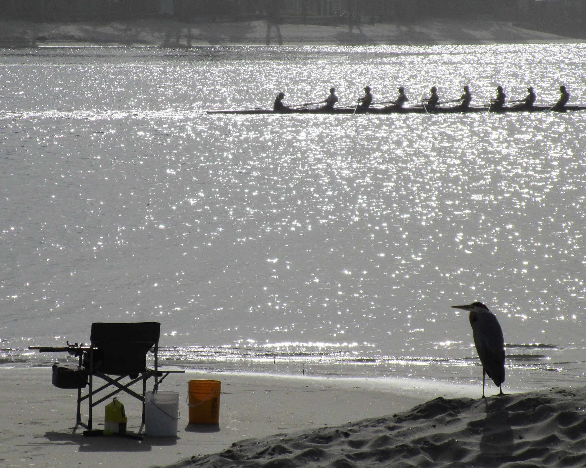 Rowing on Mission Bay San Diego