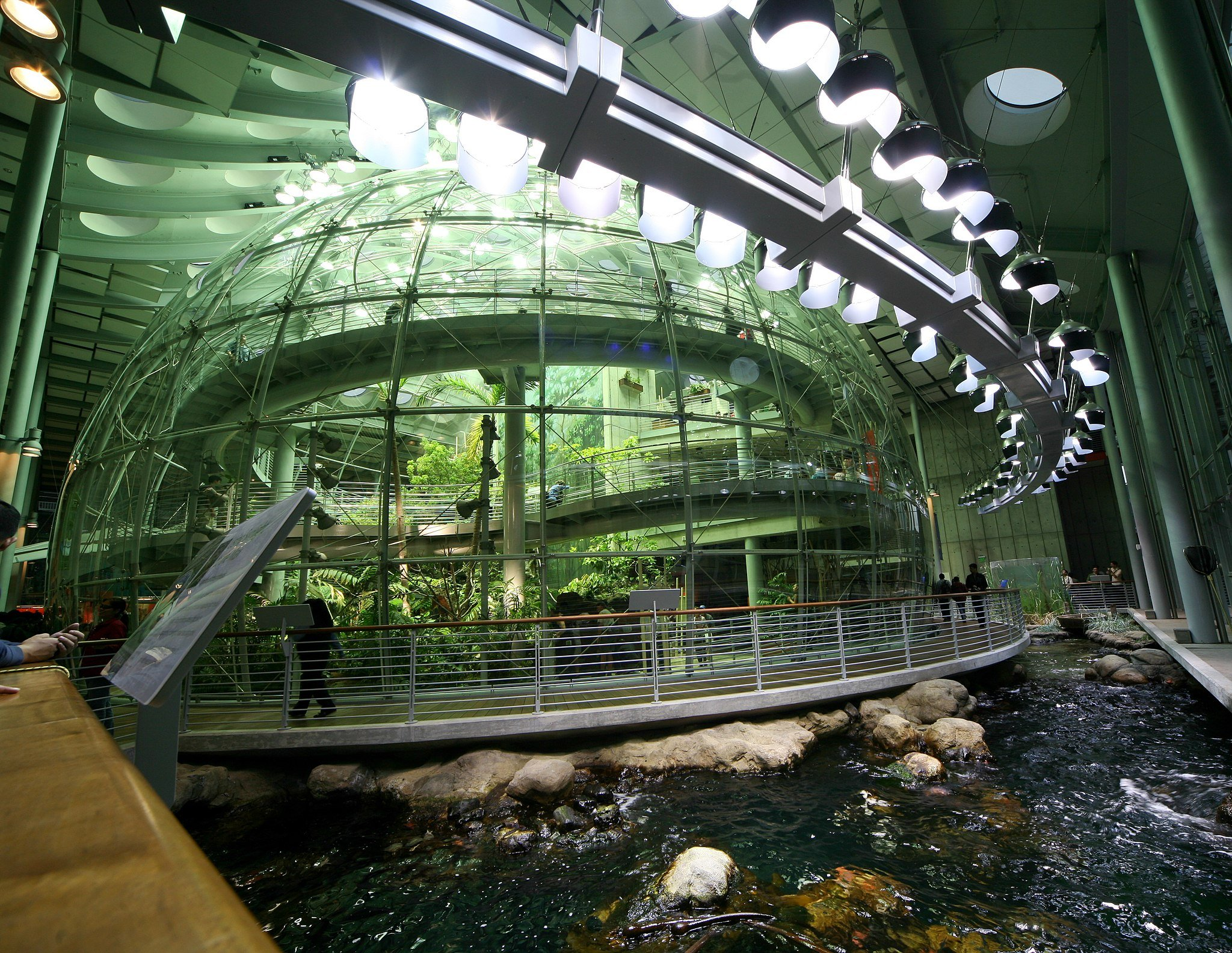 Things to do in San Francisco: California Academy of Sciences