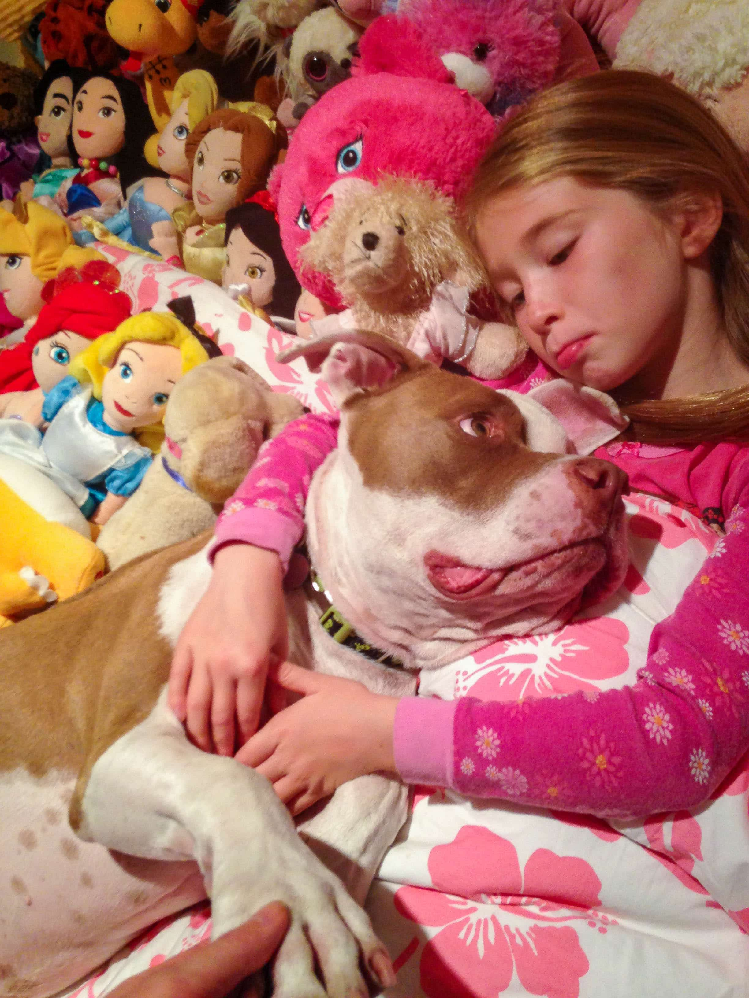My daughter cuddling our pit bull rescue