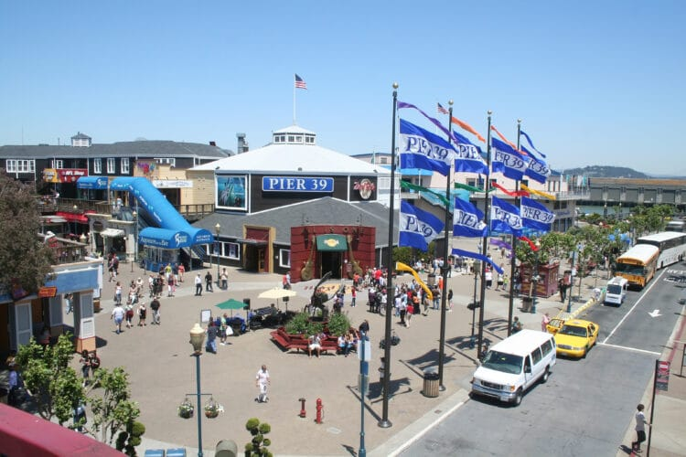 20 Top Things to Do at PIER 39 in San Francisco