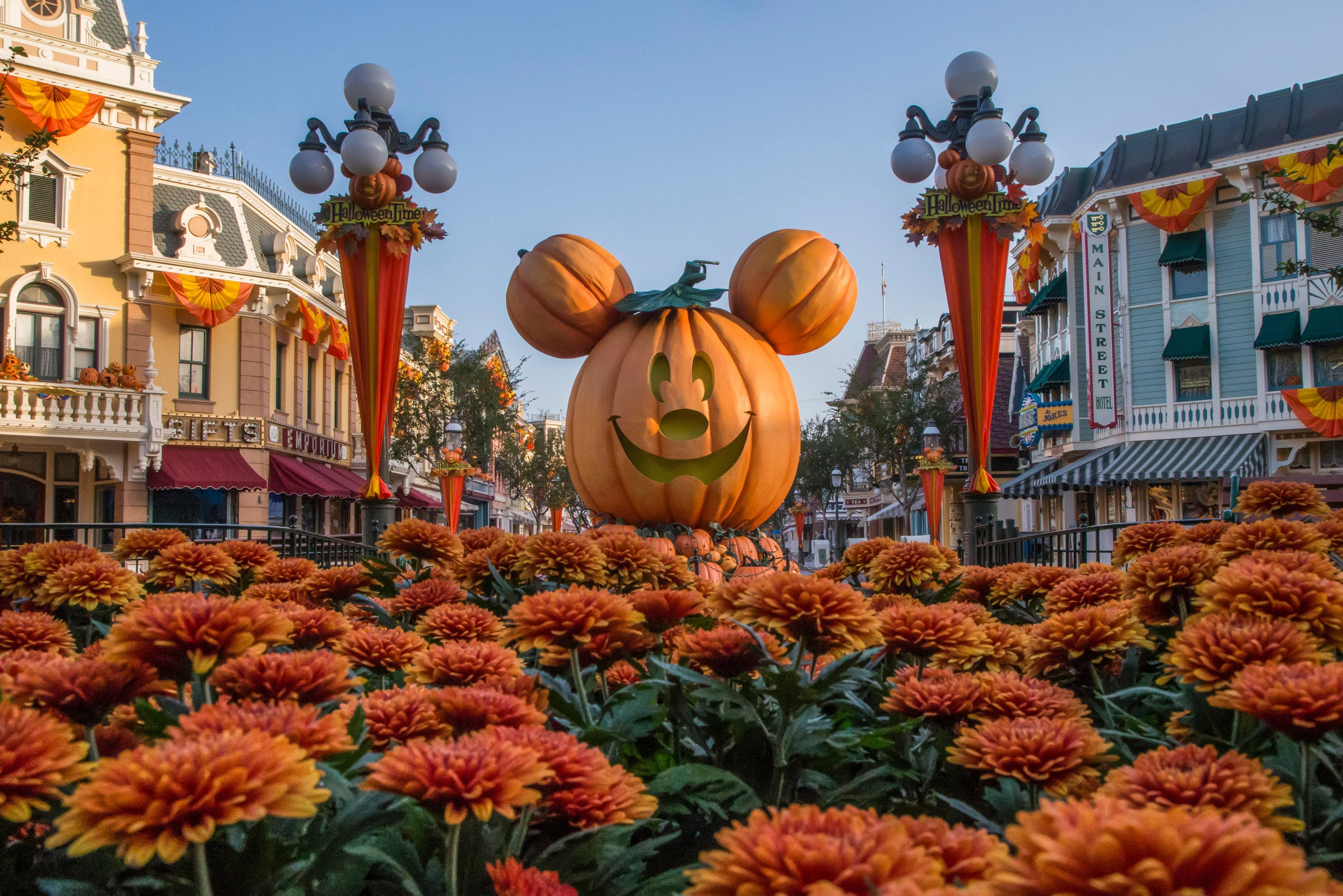 Giant Mickey Jack-O-Lantern surrounded by orange carnations on Main Street U.S.A.