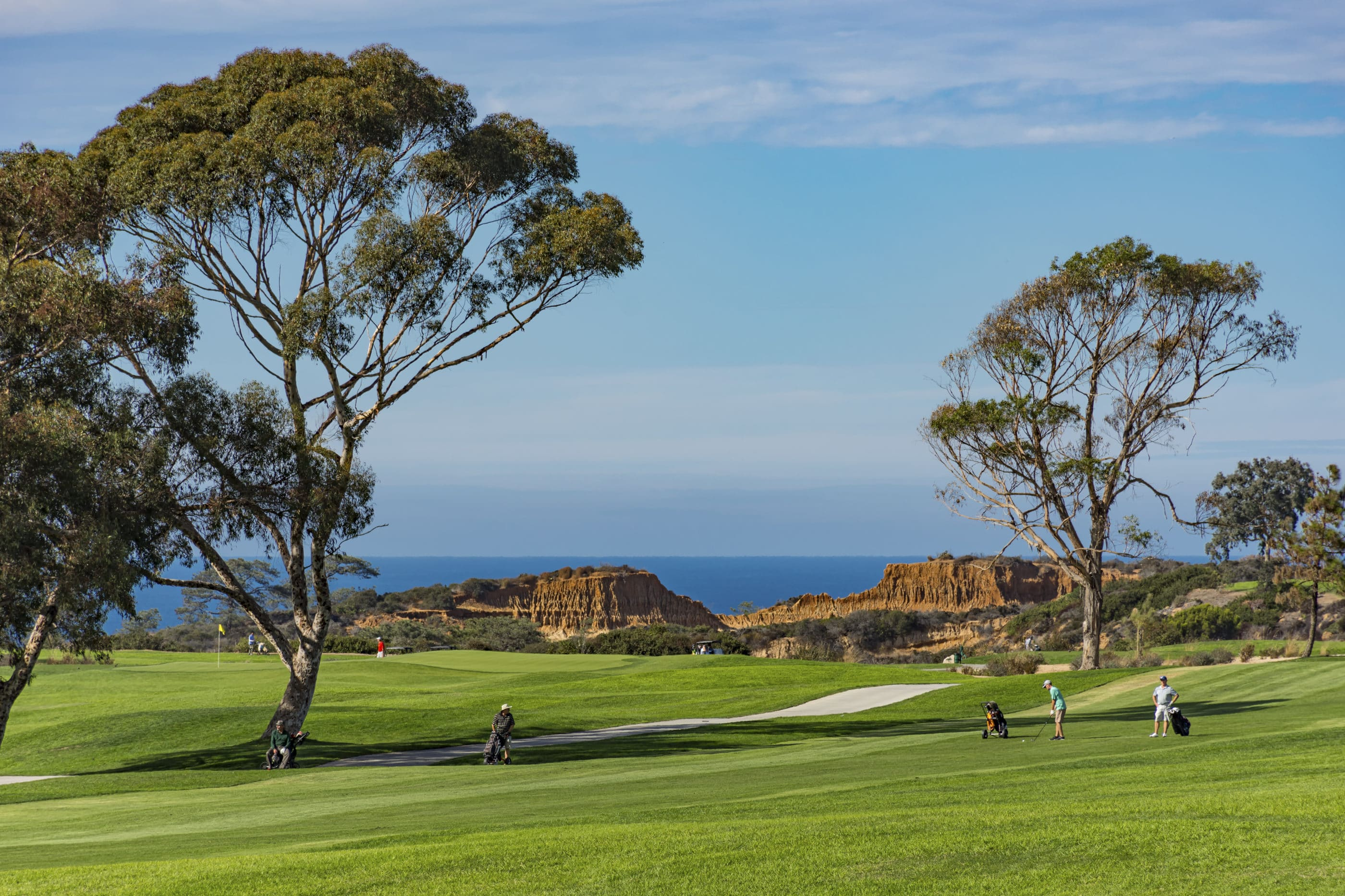 Golfers playing Torrey Pines Municipal Golf Course in La Jolla with the Pacific Ocean in the background.