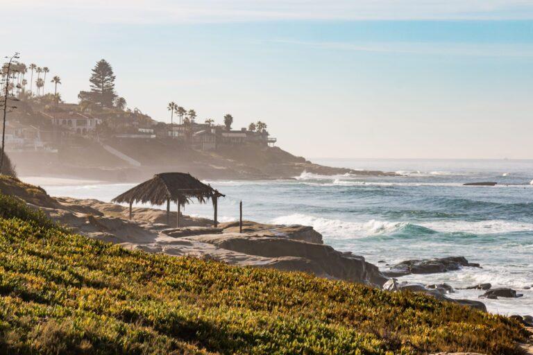 Windansea Beach Guide: Surfing, Swimming, Parking & More