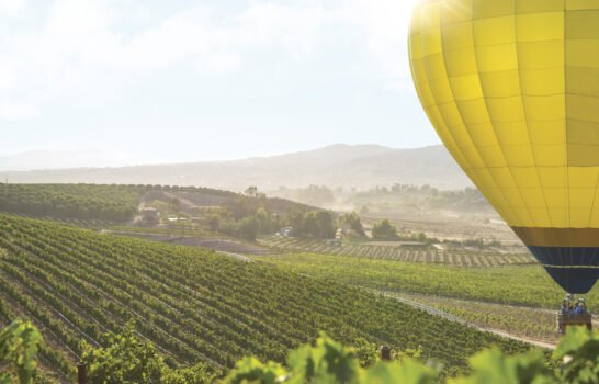 20 Top Things to Do in Temecula, California