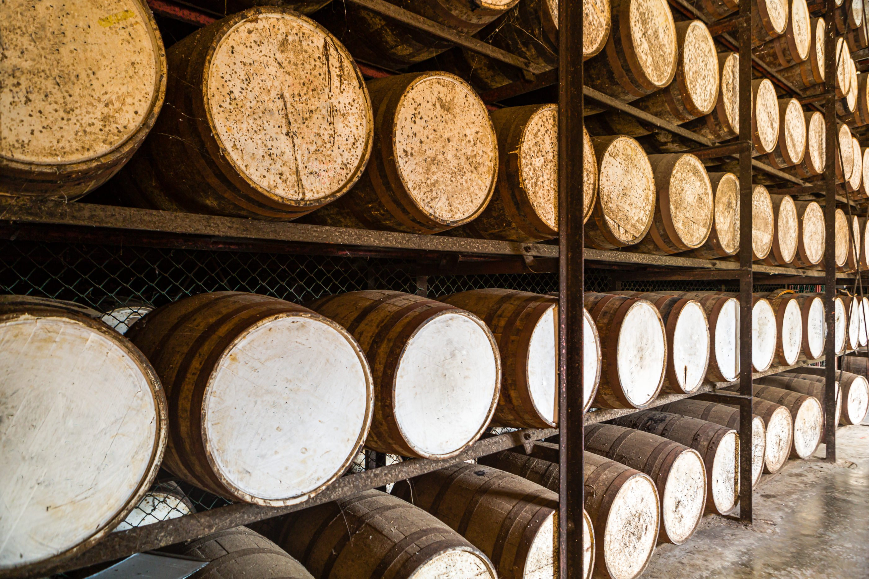 Jamaican rum barrels age on row up on row of shelves.