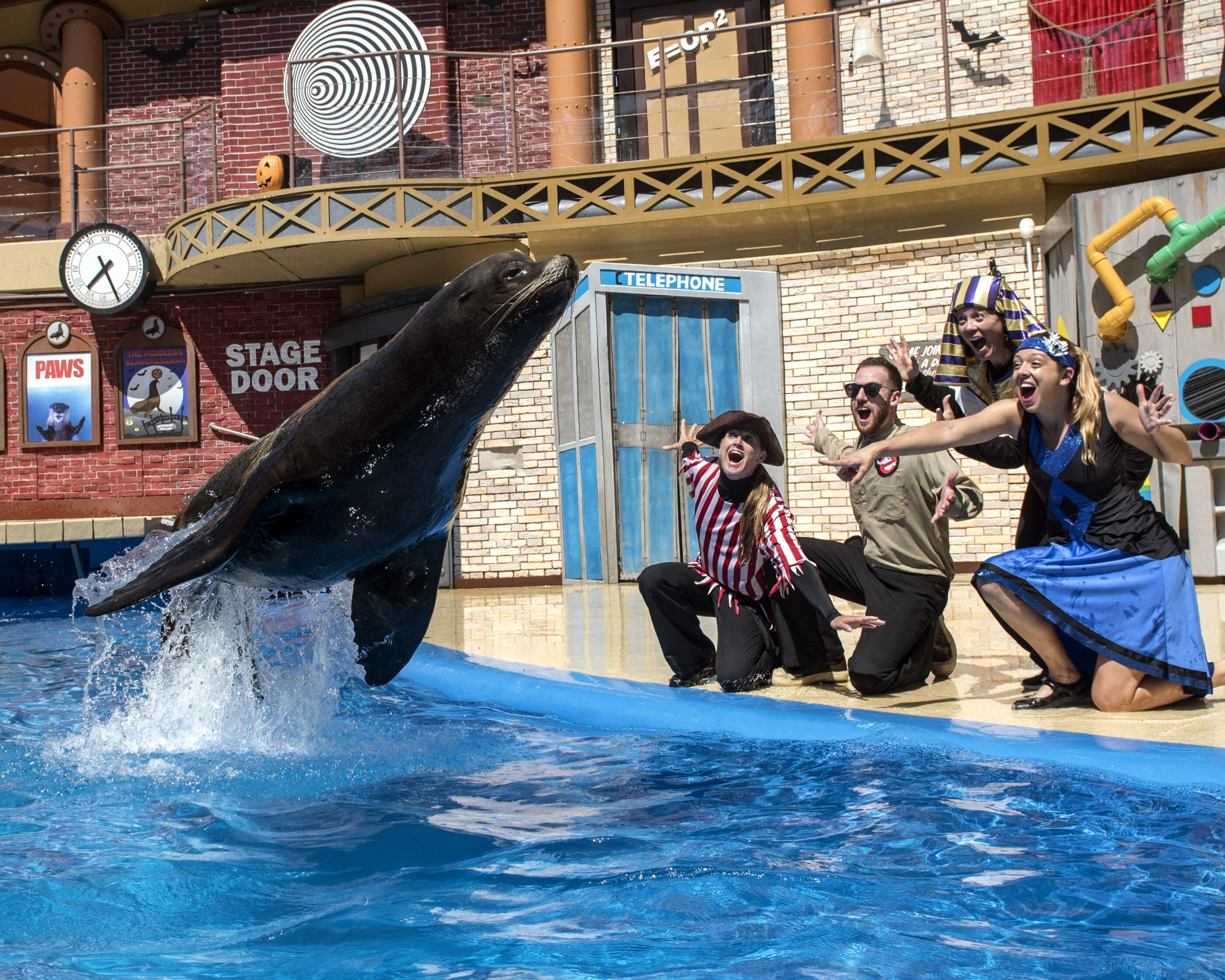 A sea lion jumps out of the water during a show as staff members in Halloween costumes cheer.