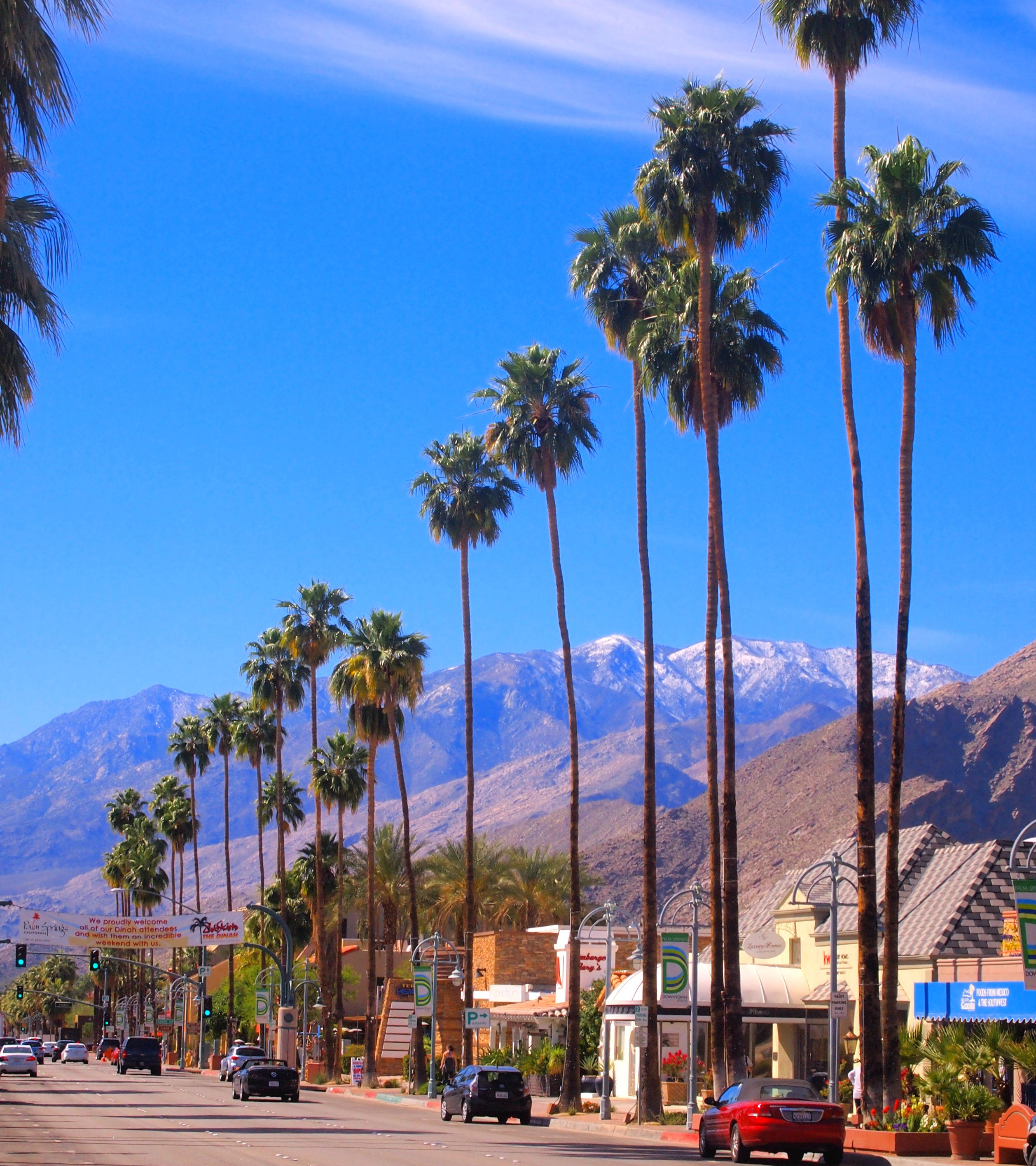Palm trees line storefronts on Palm Canyon Drive with mountains in the background.