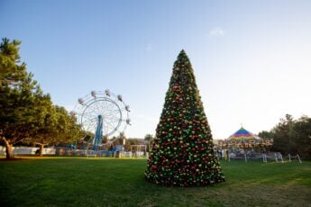 The Ultimate Guide to San Diego Holiday Events (2019)