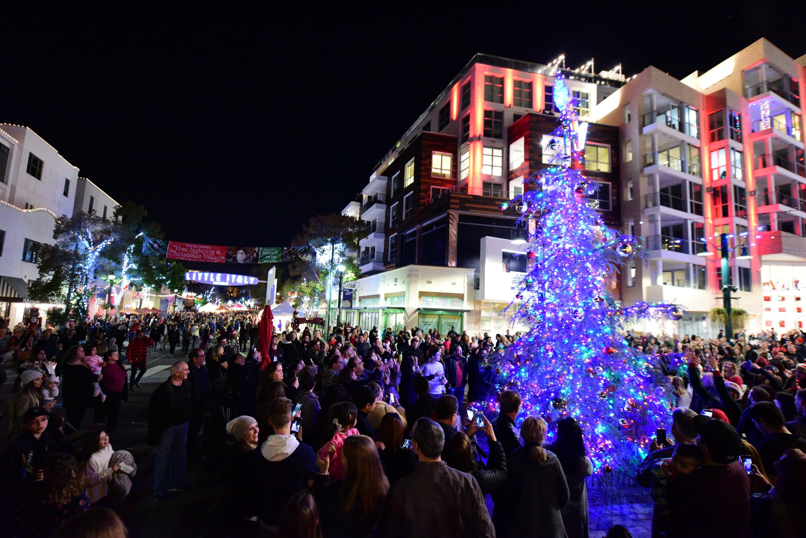 Crowds gather around the Little Italy Christmas tree at night as it's being lit for the first time.