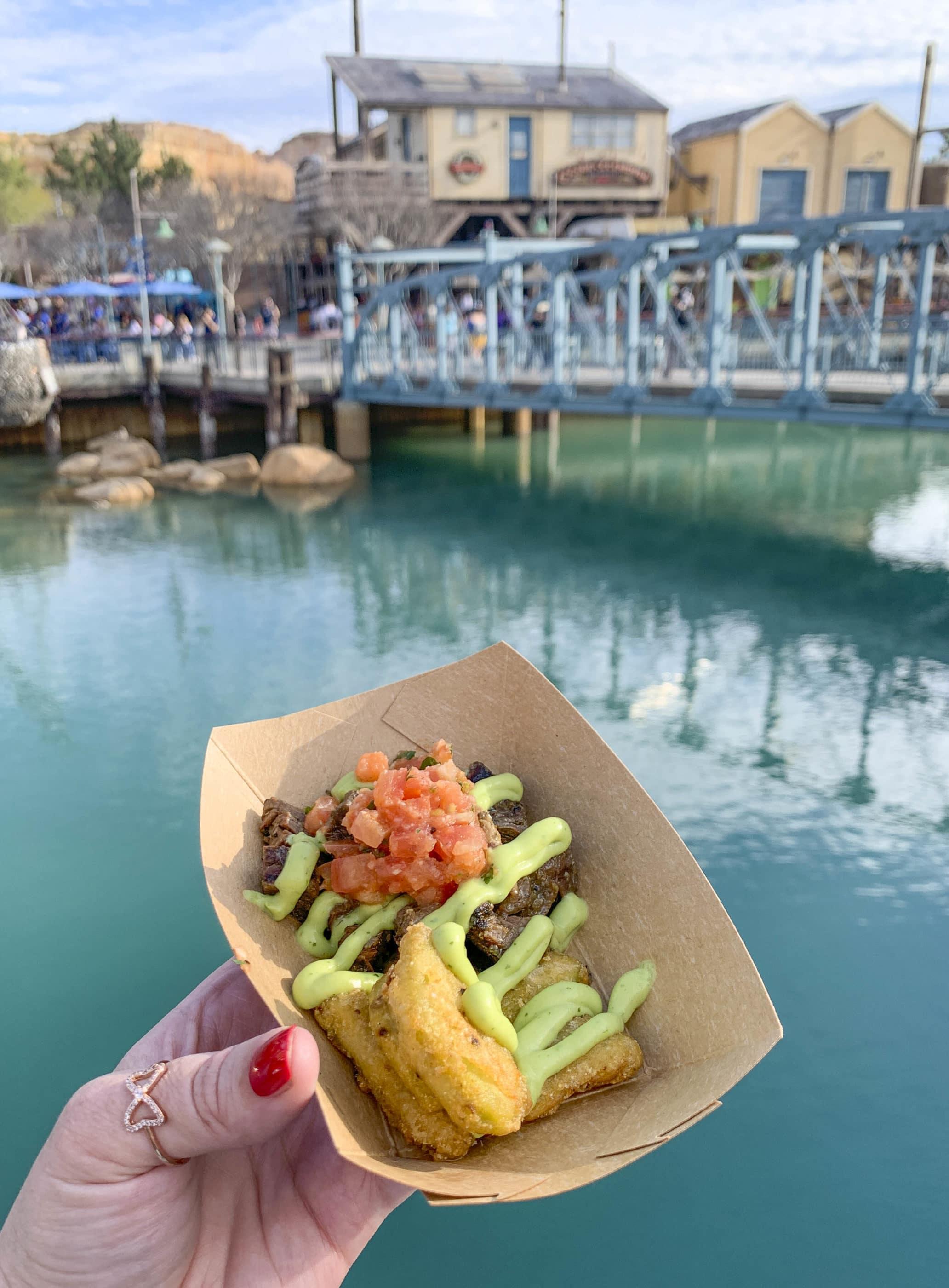 Le guacamole frit et carne asada dans un bac à papier tenu avec Pixar Pier en arrière-plan.