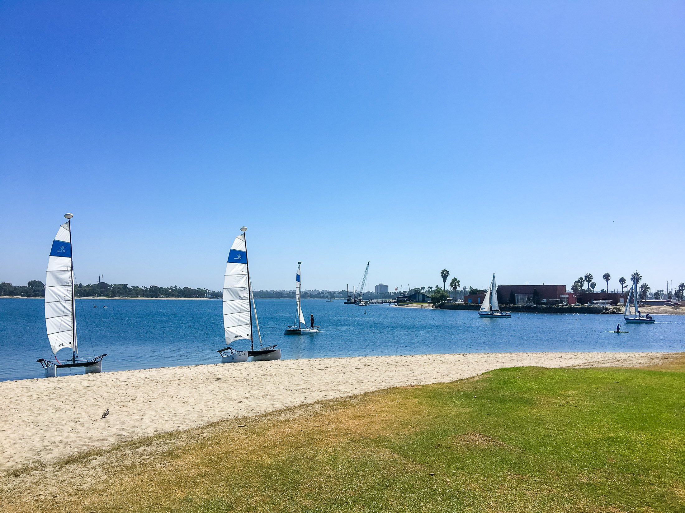 Small sail boats in the sand bordering Mission Bay in September