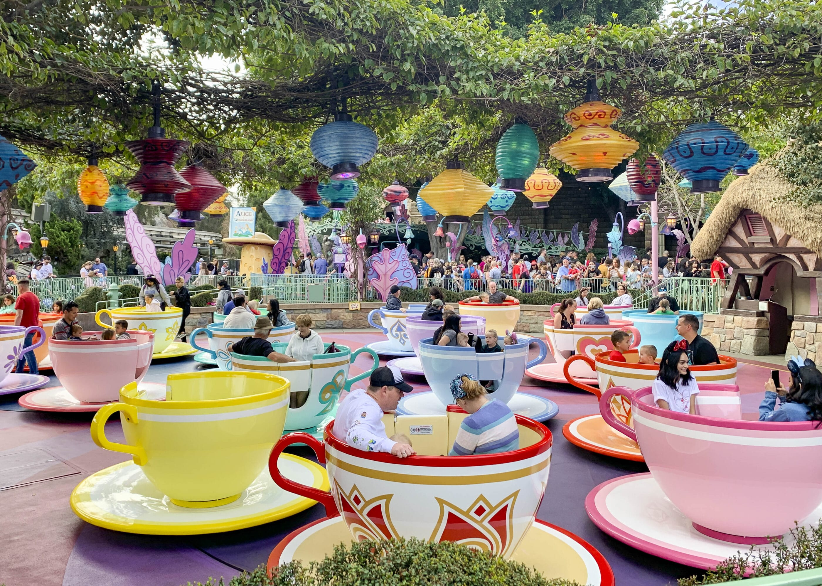 Guests spin in the teacups on the Mad Tea Party ride at Disneyland