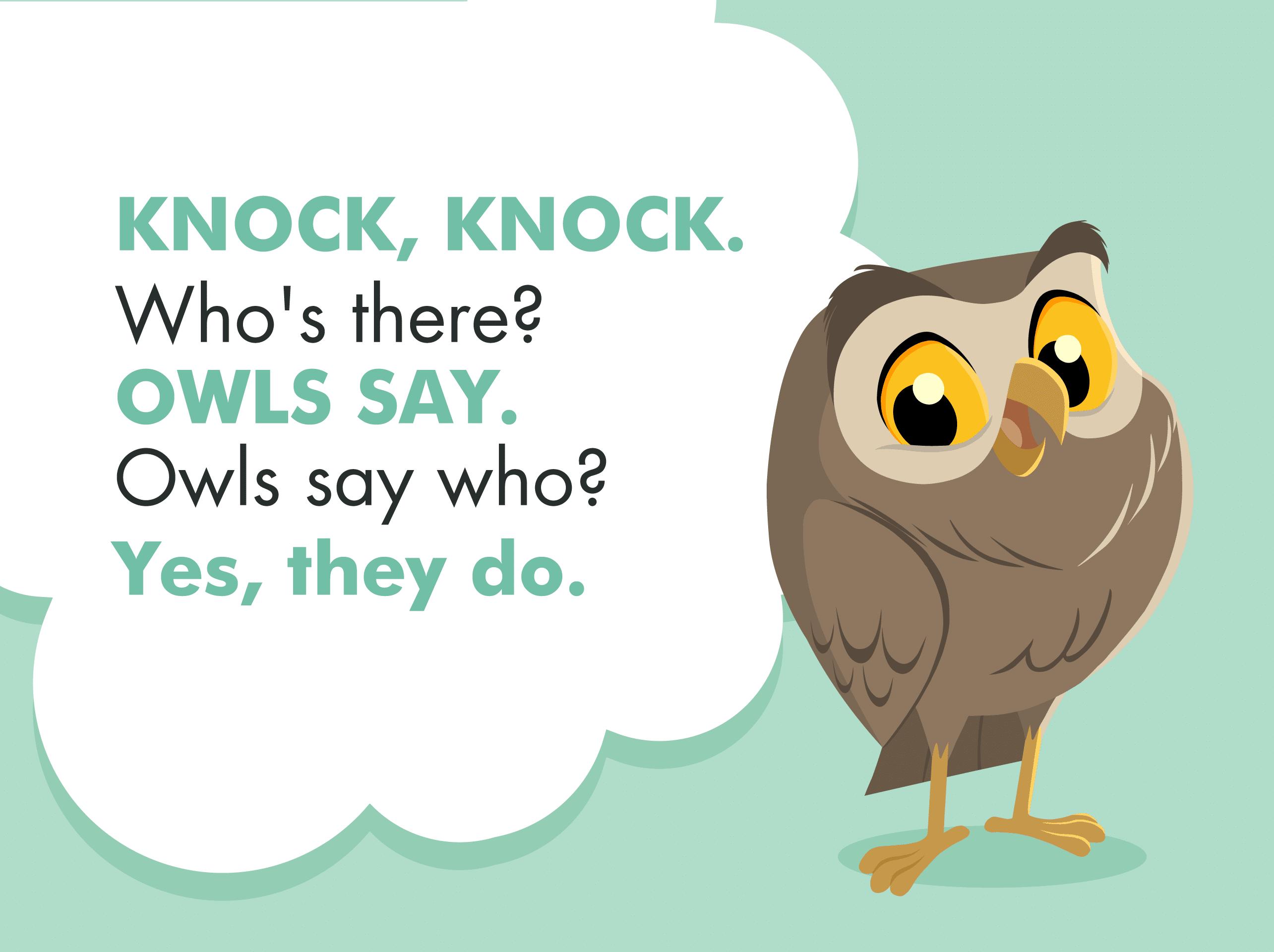 A graphic illustrating an owl knock knock joke for kids.